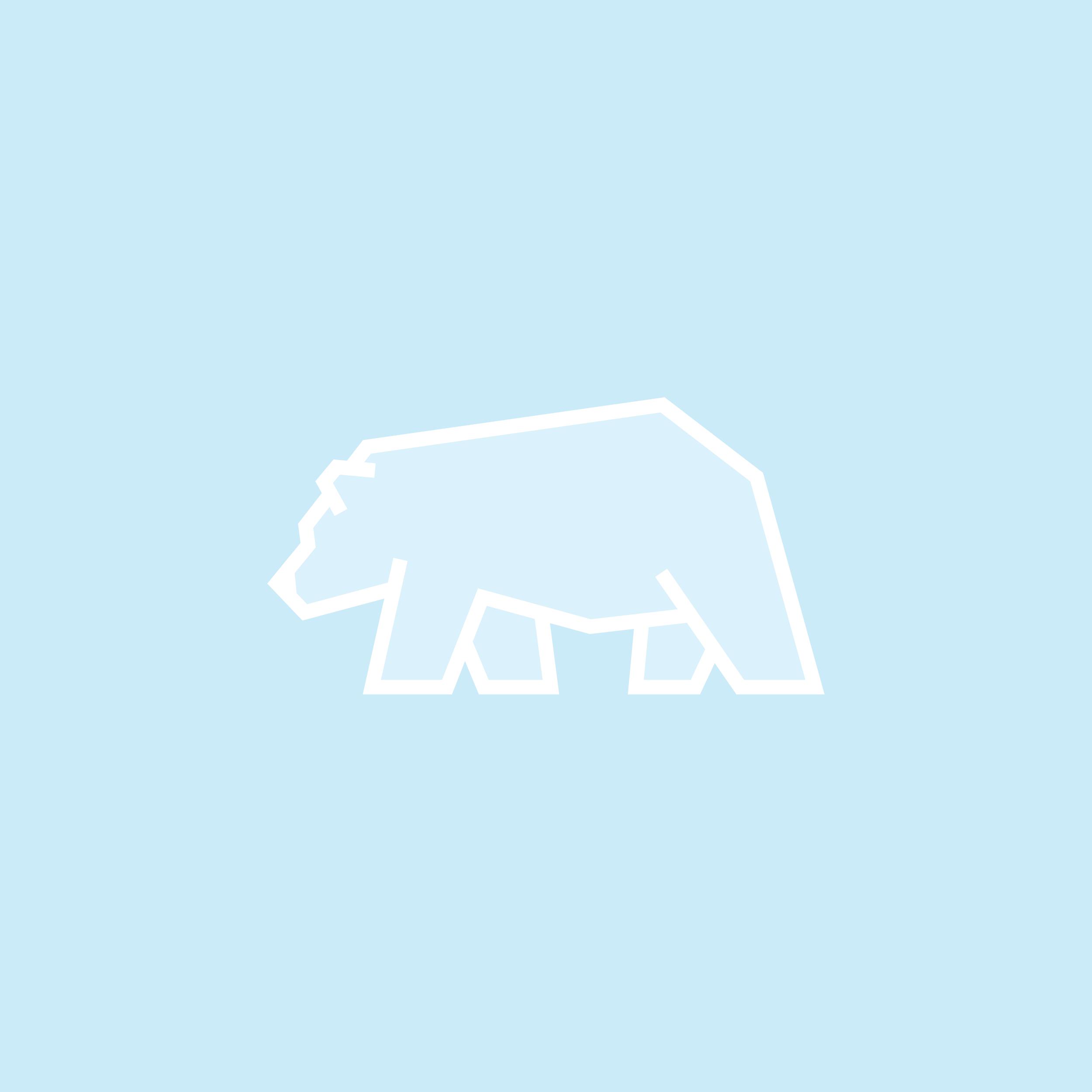 052-polarBear-52